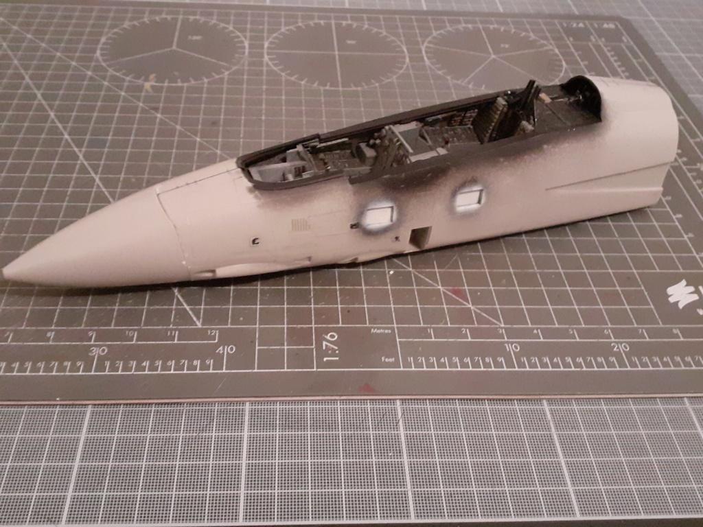 Chapeau haut de forme et griffes d'acier (F-14A Tomcat - Tamiya 1/32) - Page 3 20192731