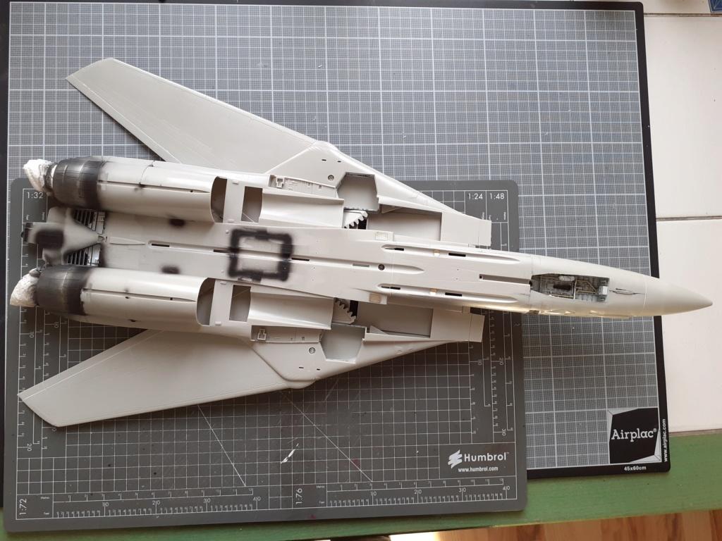 Chapeau haut de forme et griffes d'acier (F-14A Tomcat - Tamiya 1/32) - Page 3 20200354