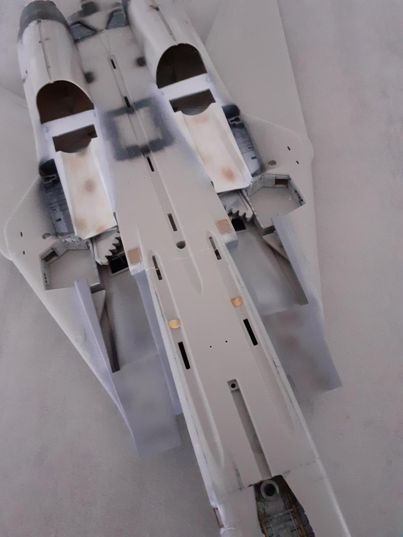 Chapeau haut de forme et griffes d'acier (F-14A Tomcat - Tamiya 1/32) - Page 4 20200766