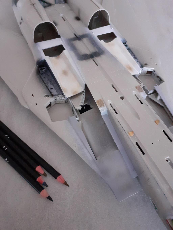 Chapeau haut de forme et griffes d'acier (F-14A Tomcat - Tamiya 1/32) - Page 4 20200767