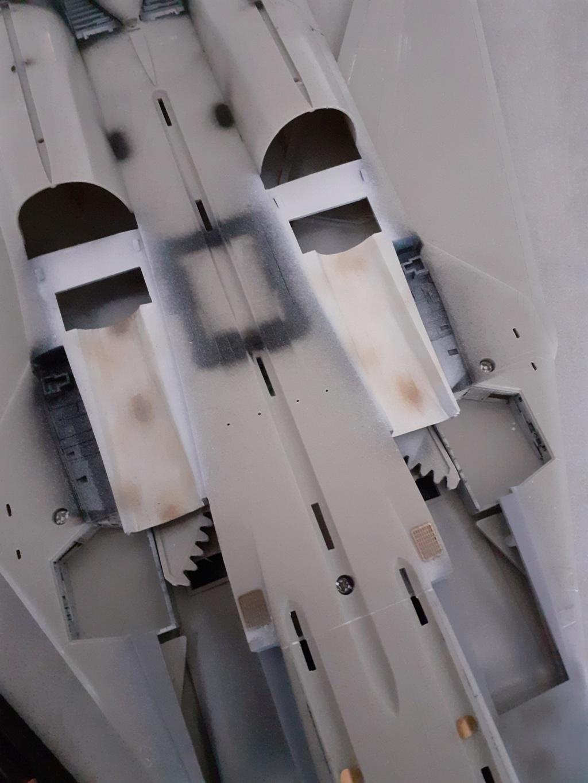 Chapeau haut de forme et griffes d'acier (F-14A Tomcat - Tamiya 1/32) - Page 4 20200768