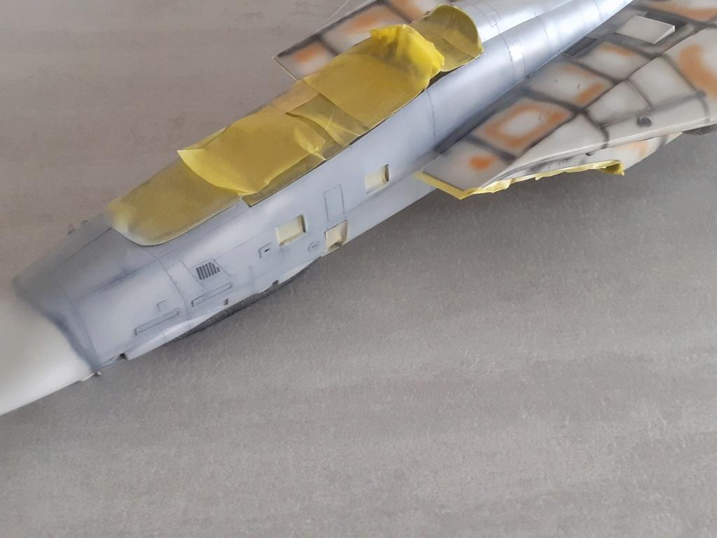 Chapeau haut de forme et griffes d'acier (F-14A Tomcat - Tamiya 1/32) - Page 6 20201646