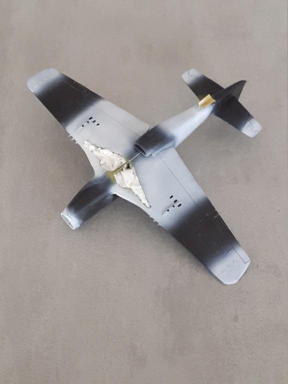 En attendant l'heure - Normandie 1944 - P-51D-5 (Heller 1/72) - Page 3 20201668