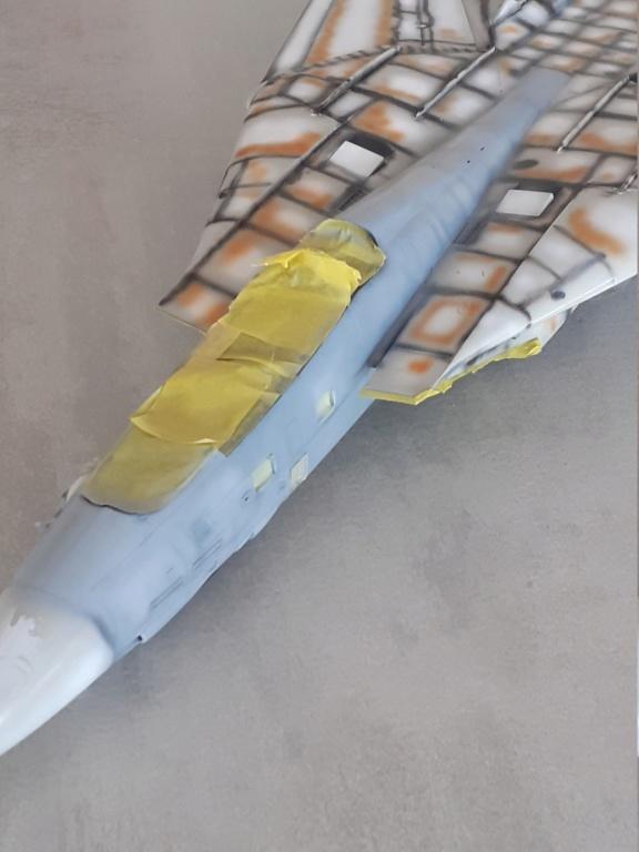 Chapeau haut de forme et griffes d'acier (F-14A Tomcat - Tamiya 1/32) - Page 6 20201711