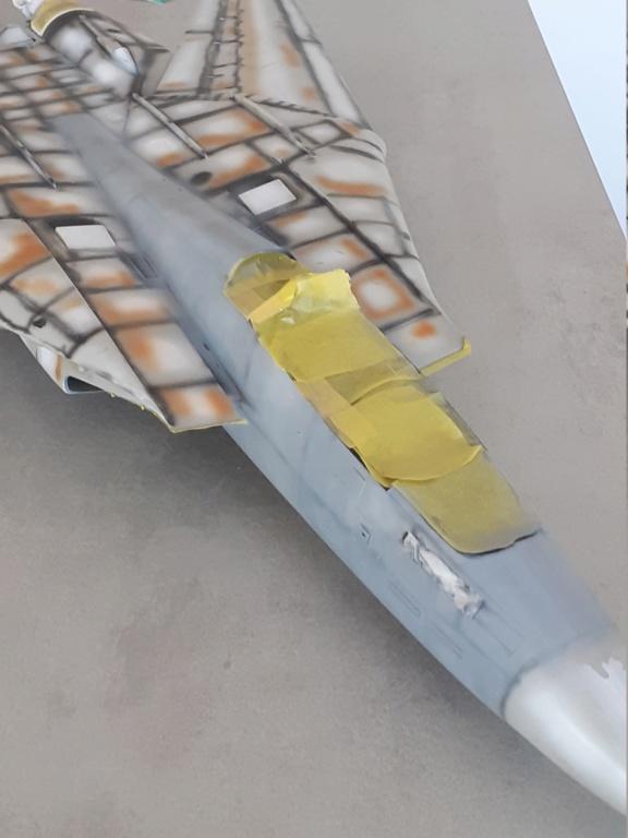 Chapeau haut de forme et griffes d'acier (F-14A Tomcat - Tamiya 1/32) - Page 6 20201712