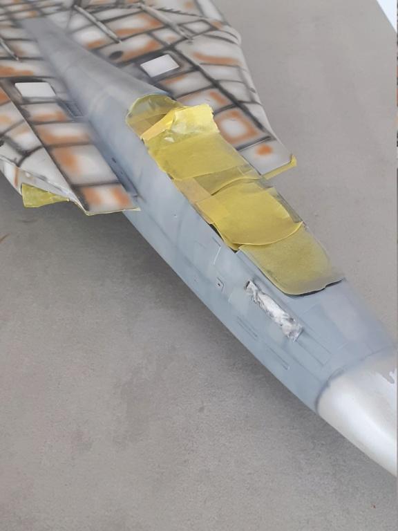 Chapeau haut de forme et griffes d'acier (F-14A Tomcat - Tamiya 1/32) - Page 6 20201742