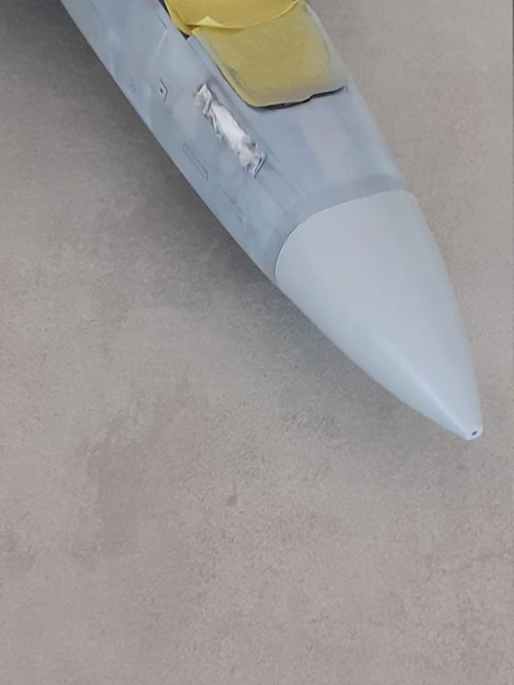 Chapeau haut de forme et griffes d'acier (F-14A Tomcat - Tamiya 1/32) - Page 6 20201902