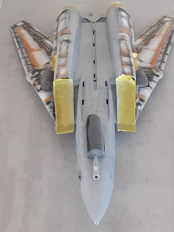 Chapeau haut de forme et griffes d'acier (F-14A Tomcat - Tamiya 1/32) - Page 6 20201903