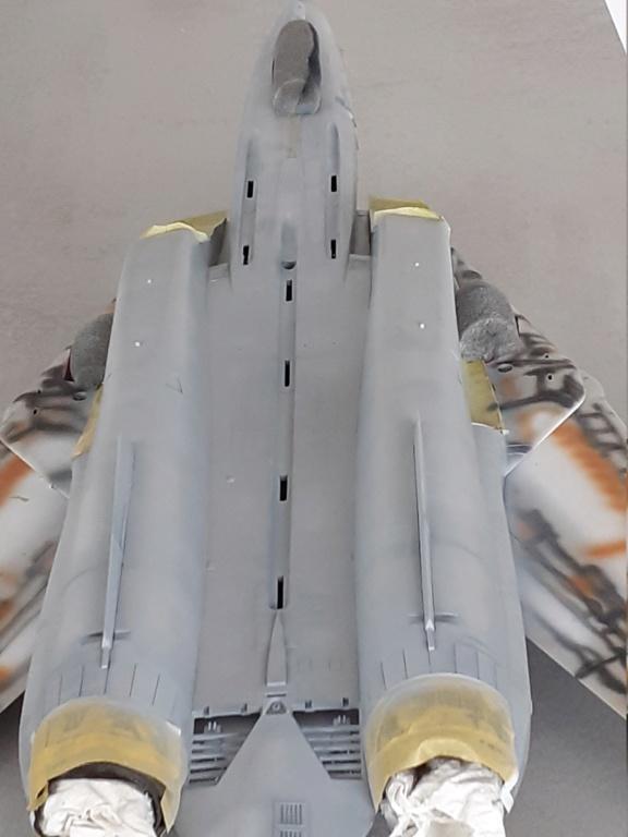 Chapeau haut de forme et griffes d'acier (F-14A Tomcat - Tamiya 1/32) - Page 6 20201927