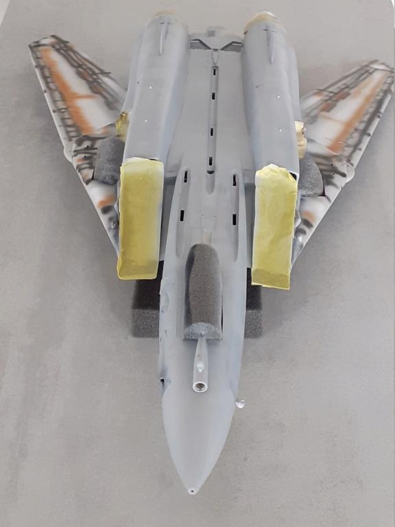 Chapeau haut de forme et griffes d'acier (F-14A Tomcat - Tamiya 1/32) - Page 6 20201928