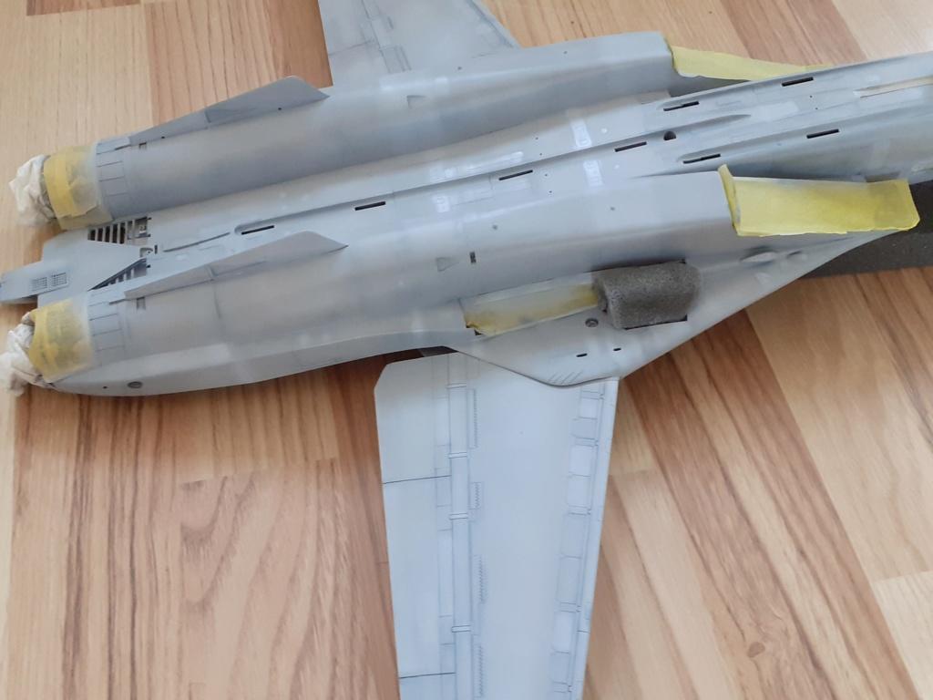 Chapeau haut de forme et griffes d'acier (F-14A Tomcat - Tamiya 1/32) - Page 6 20202001