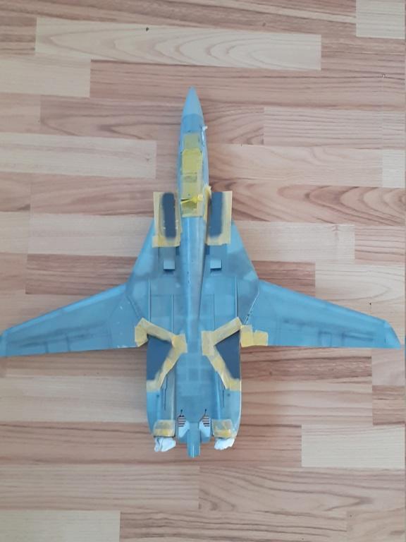 Chapeau haut de forme et griffes d'acier (F-14A Tomcat - Tamiya 1/32) - Page 7 20202335