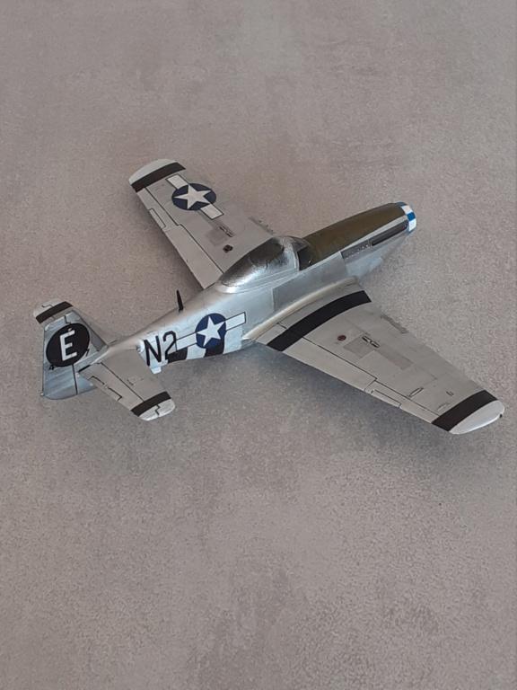 En attendant l'heure - Normandie 1944 - P-51D-5 (Heller 1/72) - Page 4 20202357