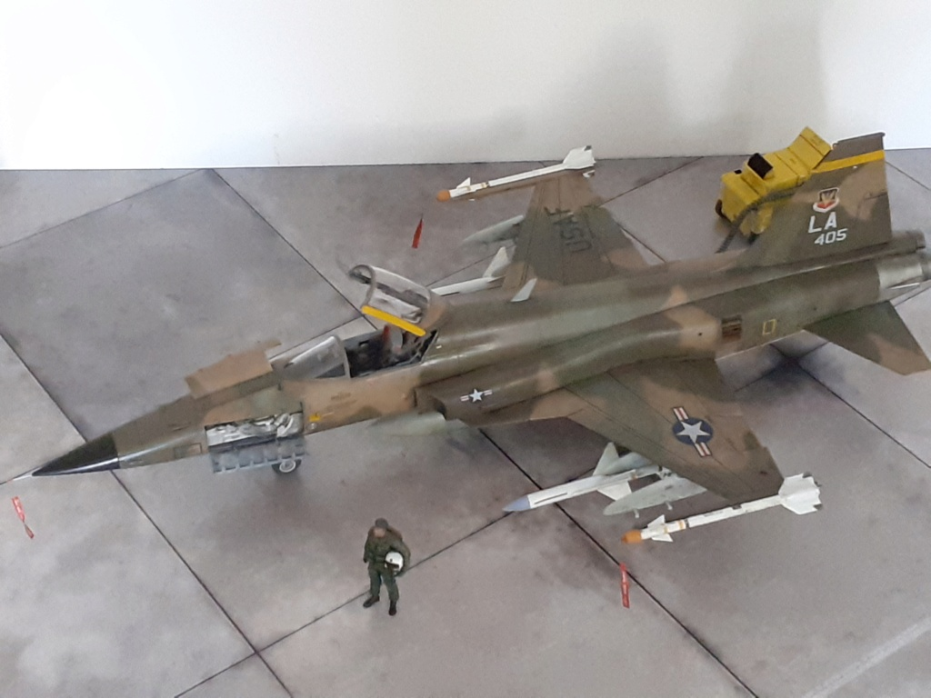 Un tigre en Arizona(F-5E Tiger II Kitty Hawk(1/32) - Page 6 20204446
