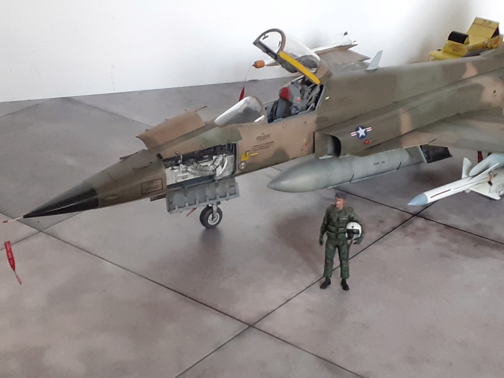 Un tigre en Arizona(F-5E Tiger II Kitty Hawk(1/32) - Page 6 20204447