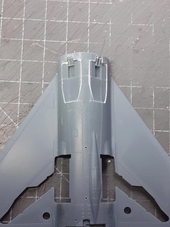 Un Russe en Asie (MiG-21 PFM - Eduard 1/48) 20210254
