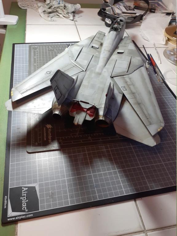 Chapeau haut de forme et griffes d'acier (F-14A Tomcat - Tamiya 1/32) - Page 14 20210357