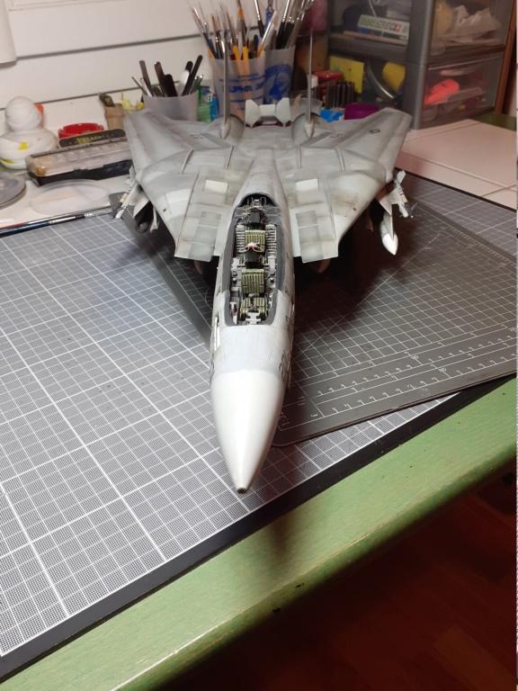 Chapeau haut de forme et griffes d'acier (F-14A Tomcat - Tamiya 1/32) - Page 14 20210360