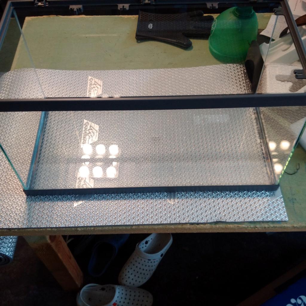 N°3 : un petit bac microfish Img_2098