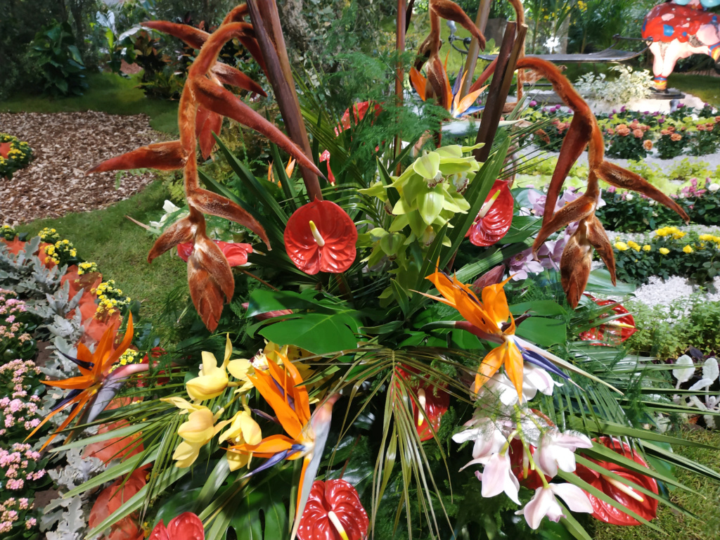 Floralies 2019 Img_2012