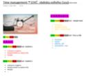 Time management ™️ (OVČ - obdobia voľného času) - Stránka 3 Time_m24