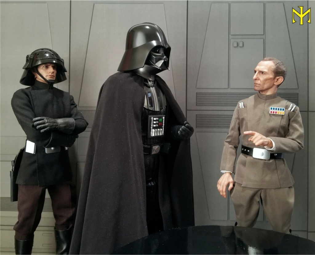 hottoys - STAR WARS Death Star Trooper (Imperial Naval Guard) by Hot Toys (updated) Hting110