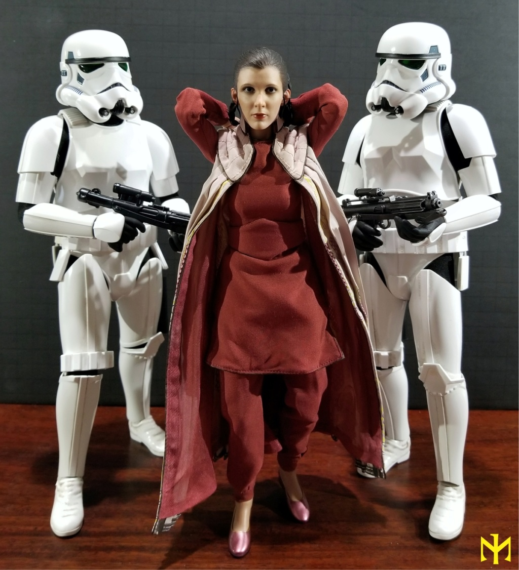 EmpireStrikesBack - STAR WARS Hot Toys Princess Leia (Bespin) (updated with Part II: Kitbash Potential) Htleia19