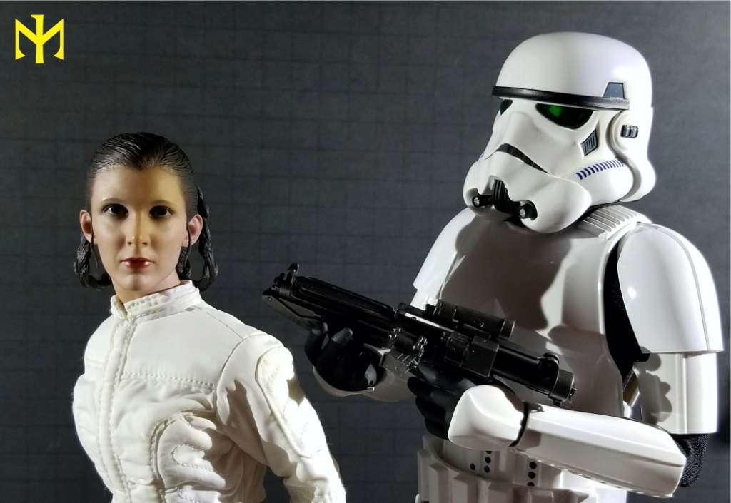 EmpireStrikesBack - STAR WARS Hot Toys Princess Leia (Bespin) (updated with Part II: Kitbash Potential) Htleia26