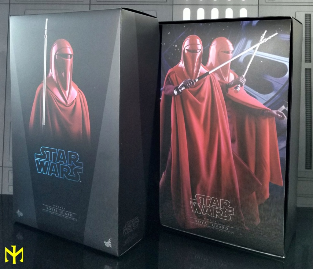 returnofthejedi - Hot Toys Star Wars Royal Guard Review Htrg0210