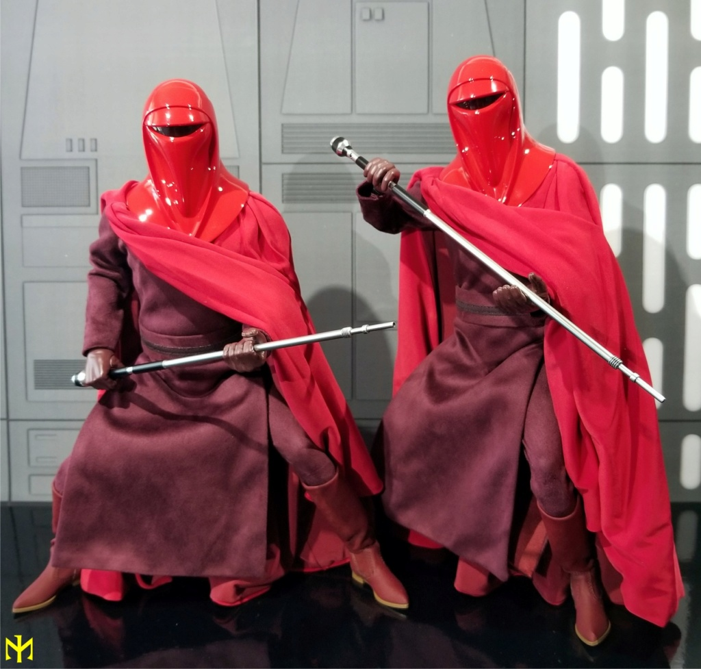 returnofthejedi - Hot Toys Star Wars Royal Guard Review Htrg0510