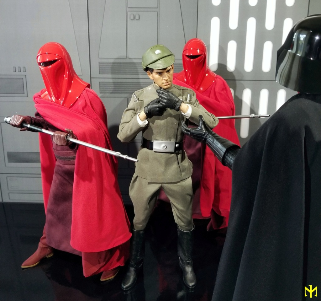 returnofthejedi - Hot Toys Star Wars Royal Guard Review Htrg1210