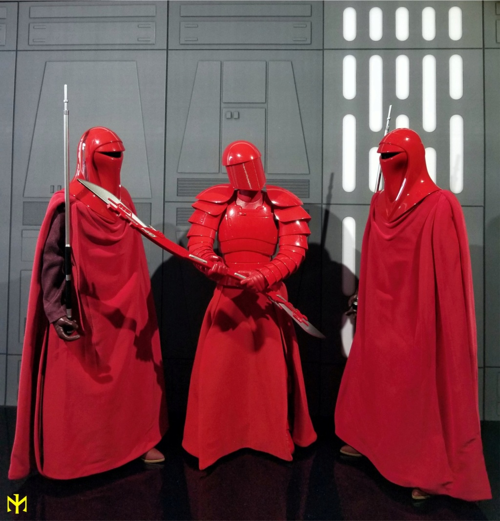 returnofthejedi - Hot Toys Star Wars Royal Guard Review Htrg1510