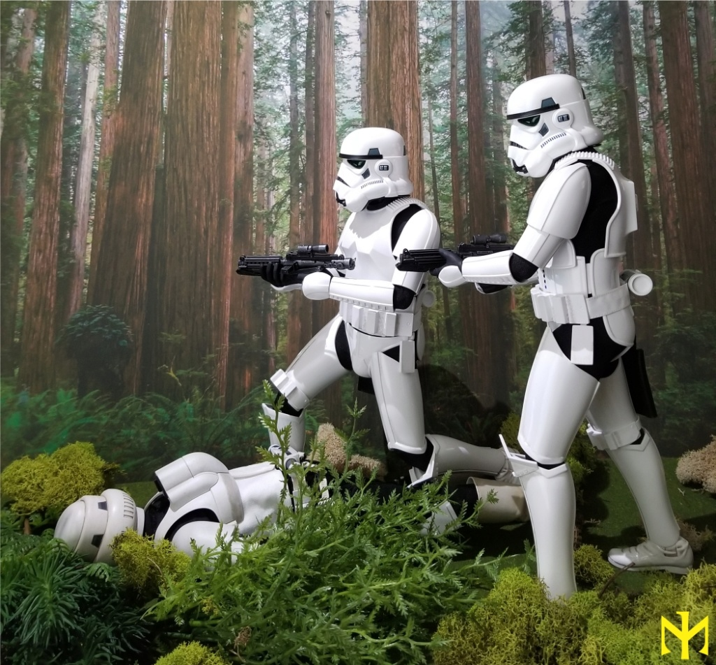 military - STAR WARS Return of the Jedi Stormtrooper by Hot Toys review (updated with Part II - Deluxe) Htrjs015