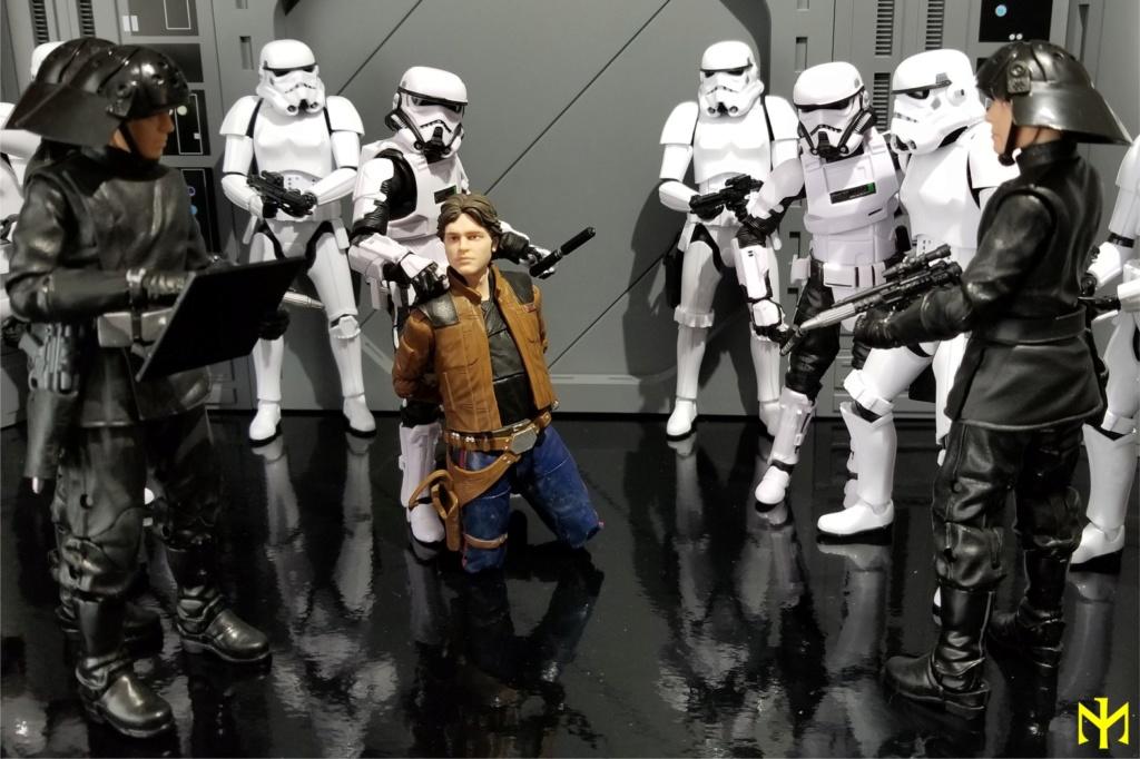 STAR WARS Imperial Patrol Trooper 1:12 scale Black Series action figure by Hasbro Pat0810