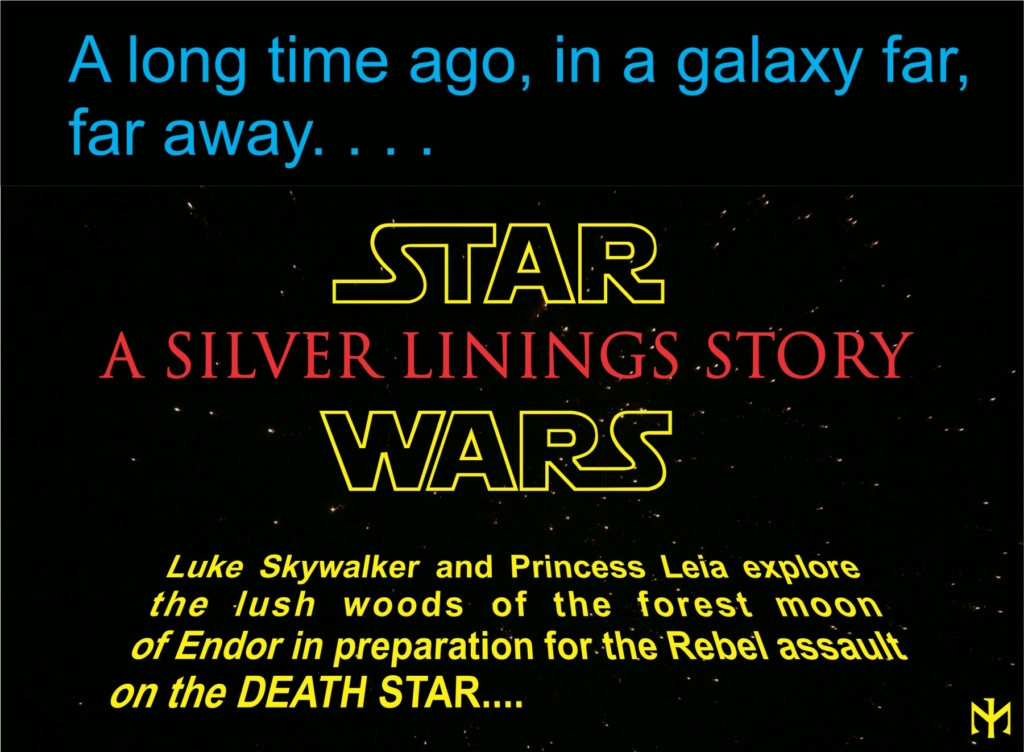 HotToys - STAR WARS A Silver Linings Story (Original Trilogy) (updated with extra photos) Slsws019