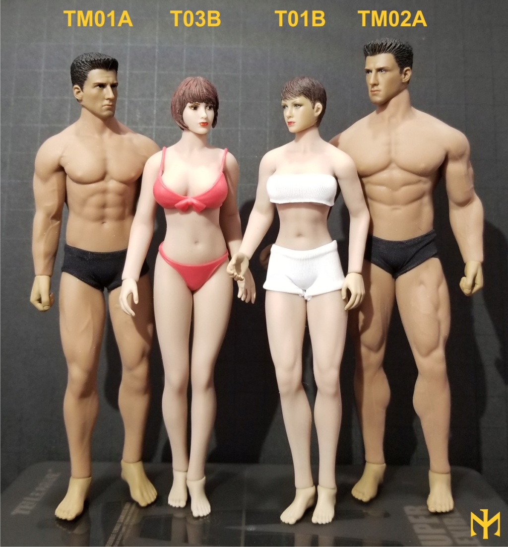 phicen - TBLeague / Phicen T03B 1:12 seamless female body and friends T03b0810