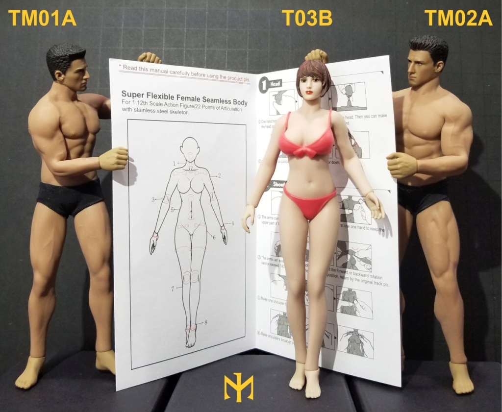 phicen - TBLeague / Phicen T03B 1:12 seamless female body and friends T03b1110