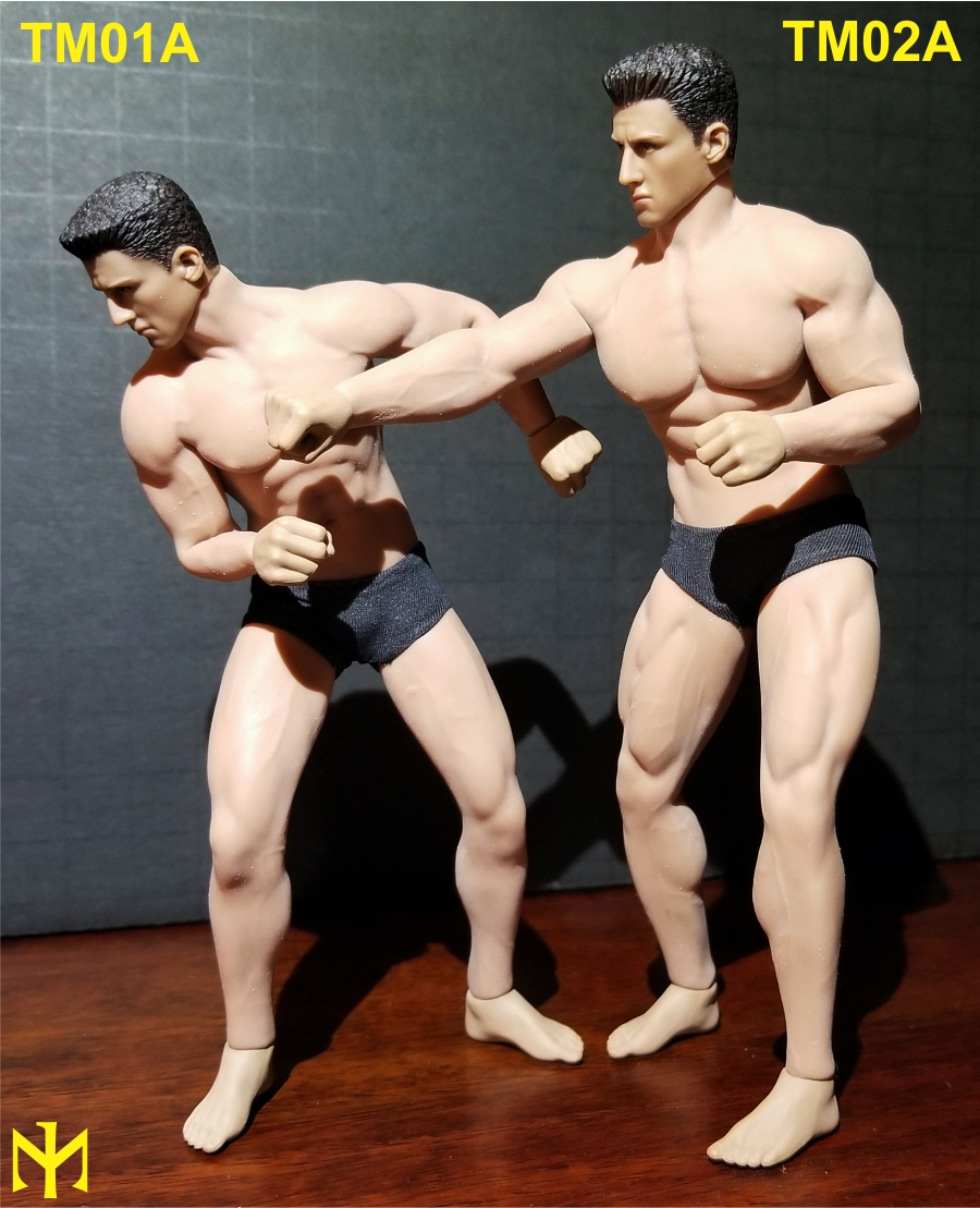 phicen - TBLeague (Phicen) 1:12 seamless male bodies review (updated) Tbl6m011