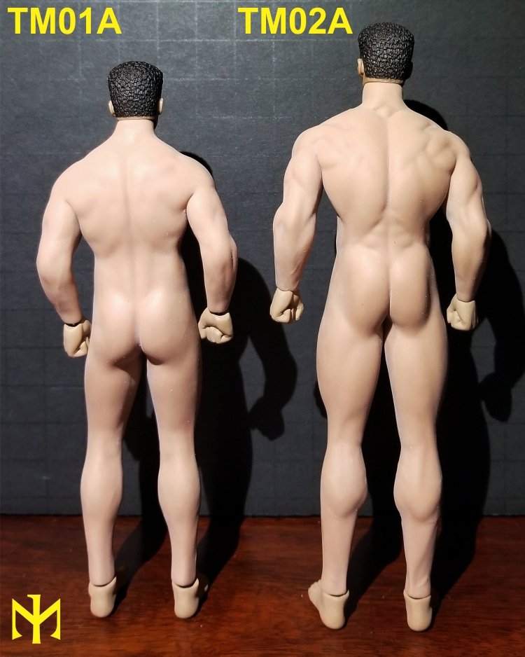 TBLeague (Phicen) 1:12 seamless male bodies review (updated) Tbl6m115