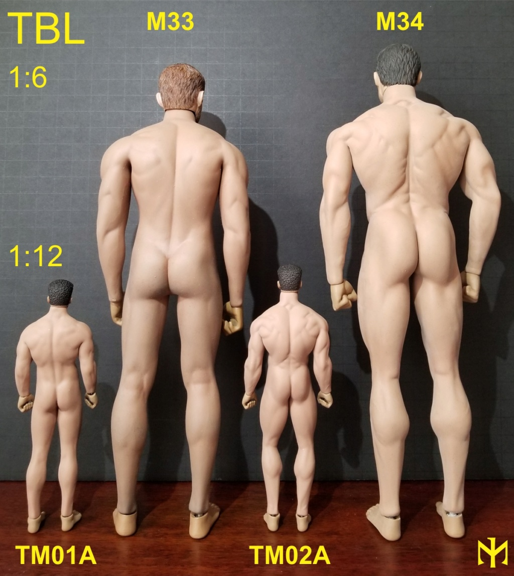 body - TBLeague (Phicen) seamless body scale comparison (updated with Part III) Tblmbs11