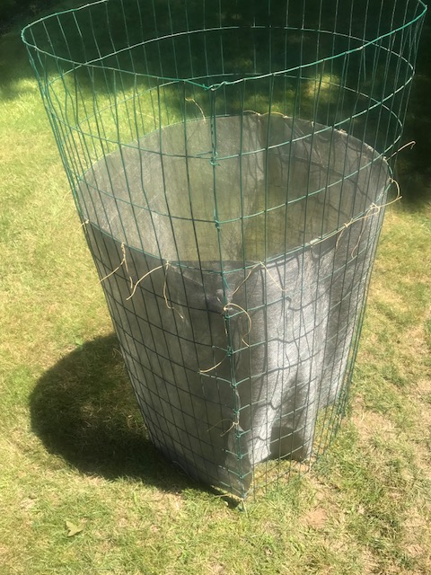 inexpensive compost cage.. Img_1515