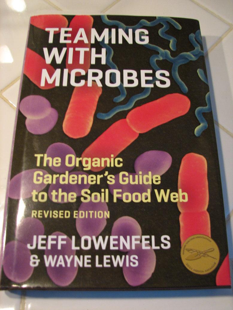 Fungus Among us? Microb11
