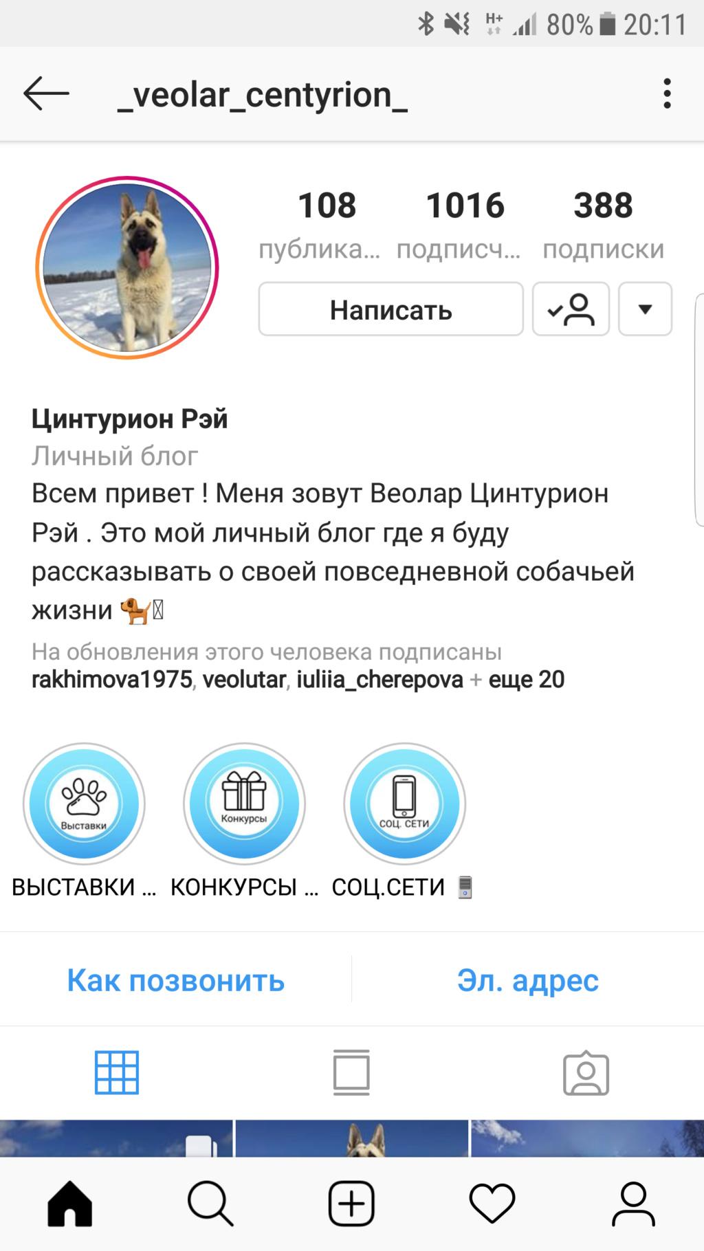 ВОСТОЧНО-ЕВРОПЕЙСКАЯ ОВЧАРКА ВЕОЛАР  ЦИНТУРИОН РЭЙ - Страница 3 Screen10