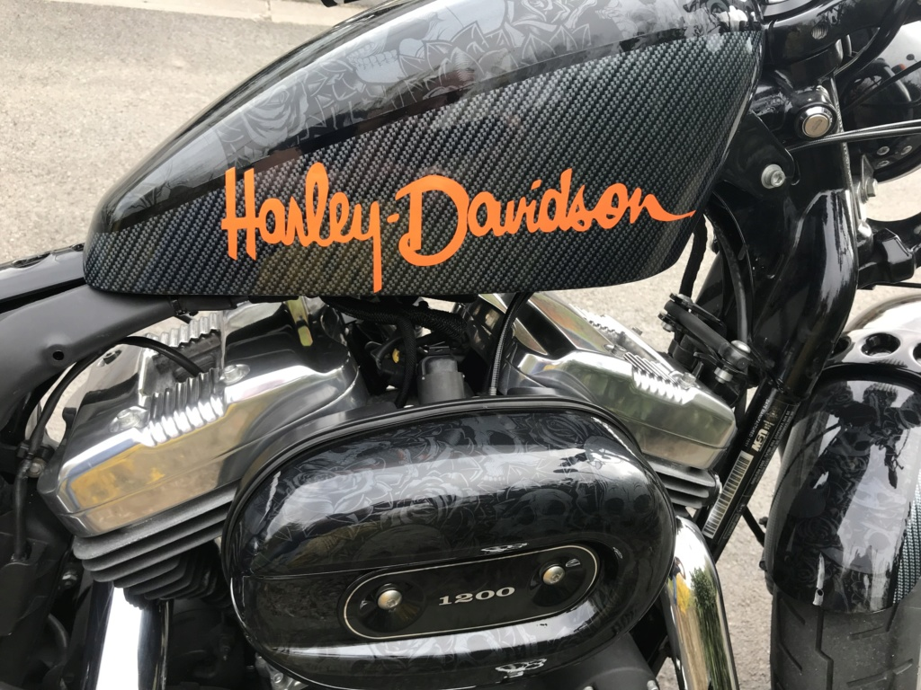 Harley Davidson 1200 Forty Eight d'Azerty59400 Img_3912