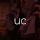 University Of Chicago - Elite 411