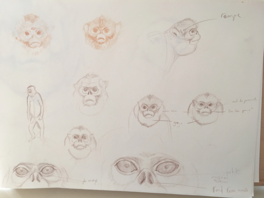 Mes croquis  Img_6210