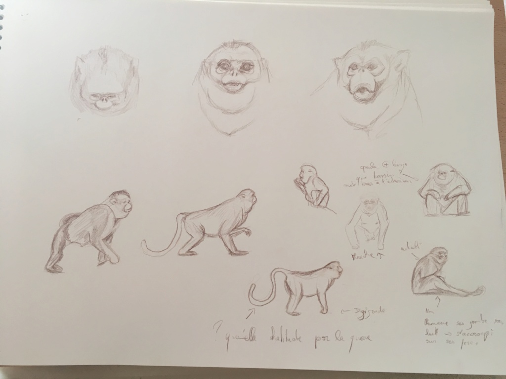 Mes croquis  Img_6214
