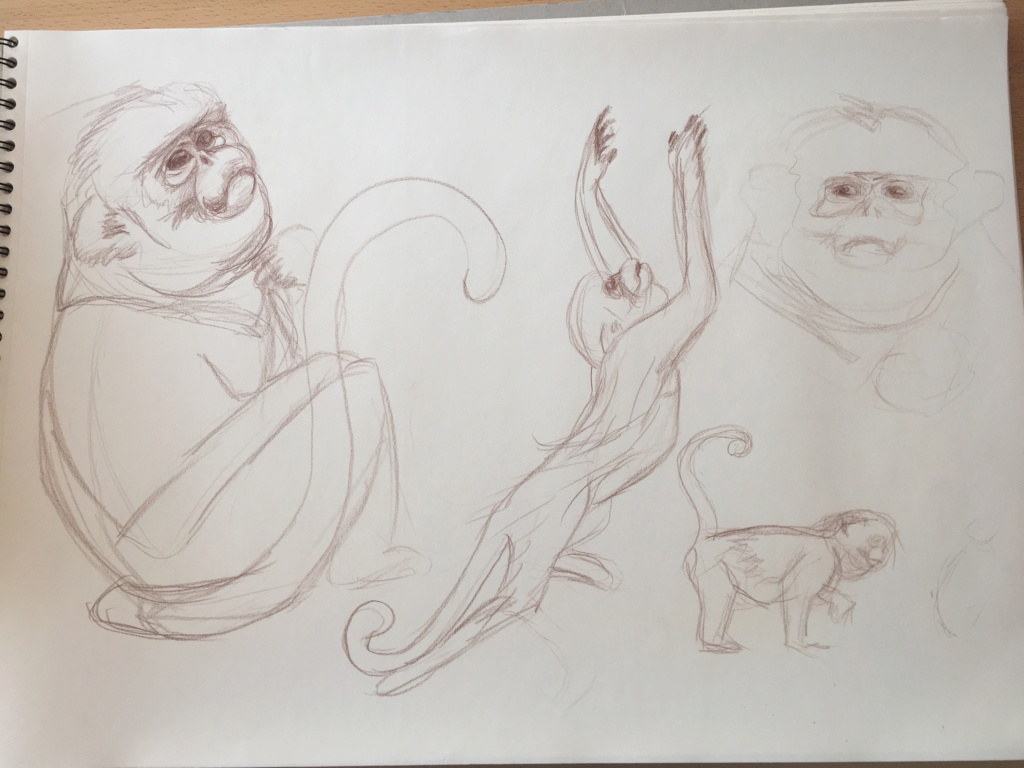 Mes croquis  Img_6215