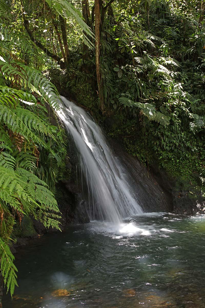 Balade en Guadeloupe 0b6a5748
