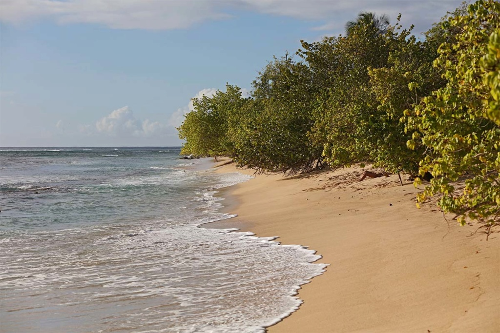 Balade en Guadeloupe 0b6a5838